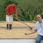 Различни методи за обработка на кафето
