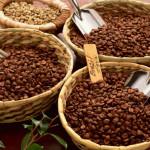 Кафе на зърна – арабика или робуста?