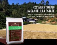 Кафе Коста Рика Таразу | Ла Канделийа Естейт – Специално кафе, отгледано под сянката на Лос Сантос