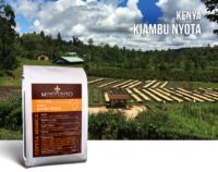 Кафе Кения Киамбу Ниота – Ярка звезда на кафееният небосклон