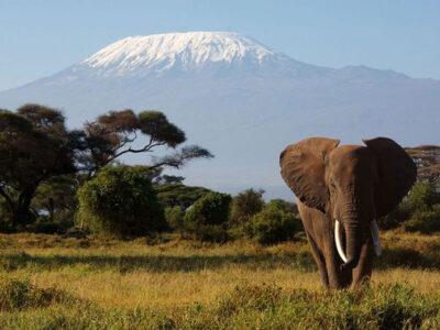 Танзания – страна на крайностите